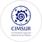 Center for Multidisciplinary Research on Chiapas and the Southern Border (CIMSUR)