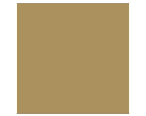 Sports Logo: Puma